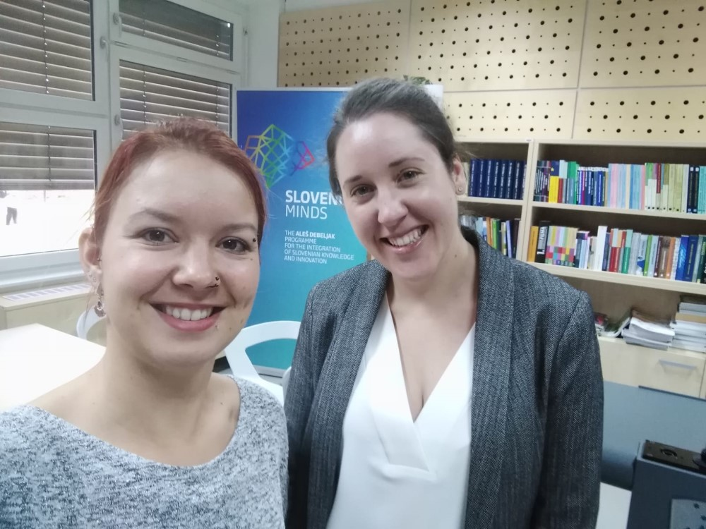 Program_Alesa_Debeljaka_MA_VTIS_ASEF_november_2019_1
